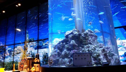 築地|まるで潜水艦!子どもたちも歓喜する「日本料理 魚月」でコスパランチ