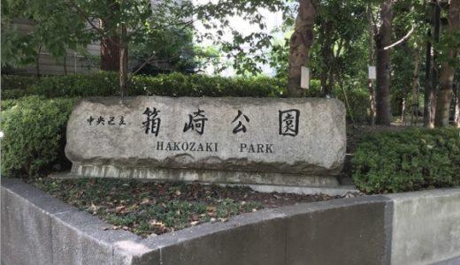 箱崎公園|オフィス街の中のオアシス。噴水での水遊びも楽しい公園