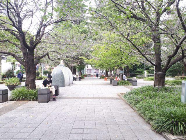 桜川公園_広場