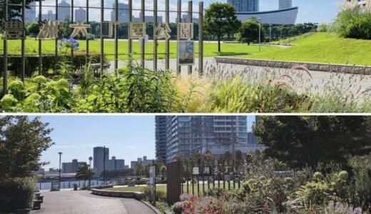 豊洲六丁目公園・豊洲六丁目第二公園|水陸両用バス「スカイダック」を見られる運河沿いの2つの公園