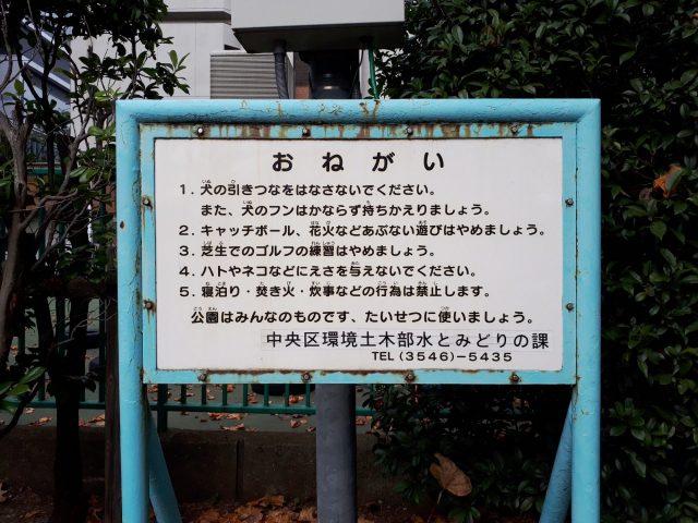 市場橋公園設備