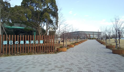 辰巳の森海浜公園|珍しいスポーツに親子で挑戦!豊洲の隣にある大きな公園