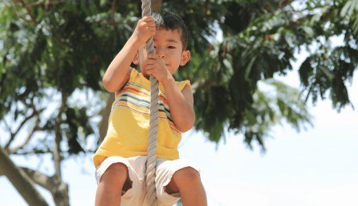 まとめ|子どものチャレンジを応援したい!ターザンロープがある公園