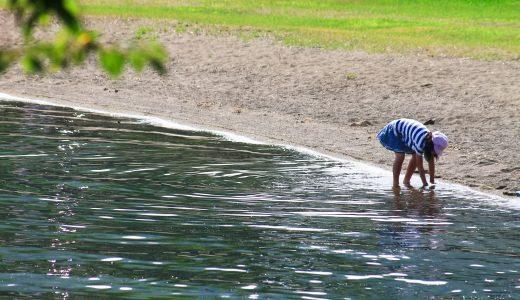 まとめ|眺めの良い景色で心までリフレッシュ!水辺に近い公園(江東区)