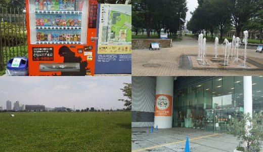 東京臨海広域防災公園|防災を学べる無料ツアーの後は、広い芝生でピクニック!