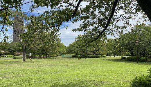 猿江恩賜公園|スカイツリーも眺められる開放的な公園。複合遊具にじゃぶじゃぶ池も。